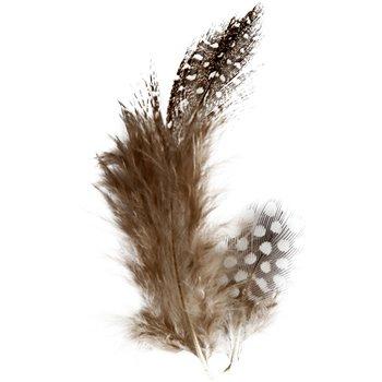 Plumas de gallina de guinea - 3 gr