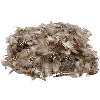 Plumas de gallina de guinea - 50 gr