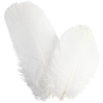 Plumas de ganso redondas - 3 gr